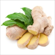 Ginger-extract-Zingiber-officinalis