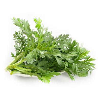 Artemisia annua 1