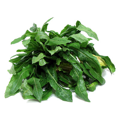 Wild Lettuce 1